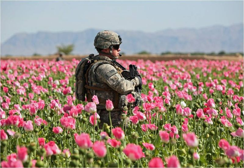 US Military Runs Afghanistan Opium Production